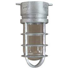 ANP Lighting VTC100GLCL-GUPC