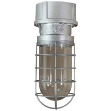 ANP Lighting VTS200GLCL-RTCNC-42WPL-GUP