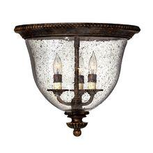 Hinkley Lighting H3712