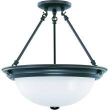 Nuvo Lighting 60/3151
