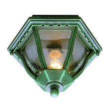 Trans Globe Lighting 4558