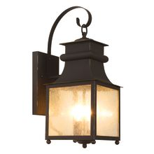 Trans Globe Lighting 45632