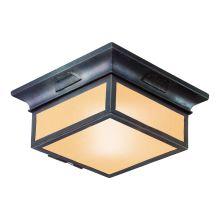 Troy Lighting CF9000