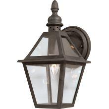 Troy Lighting B9620