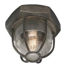Troy Lighting CL3890