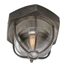 Troy Lighting CL3891