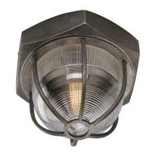 Troy Lighting CL3891