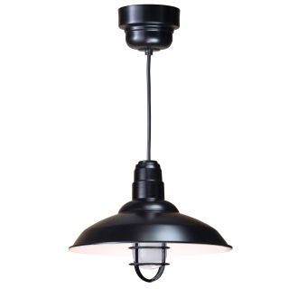 ANP Lighting W516-41-100GLFR-GUP-41-RBHC