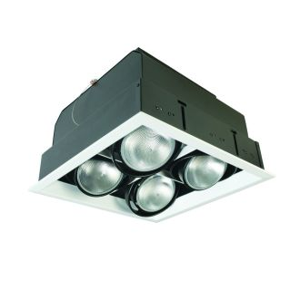 Eurofase Lighting TE164B