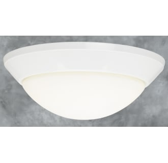 Forte Lighting 20016-02