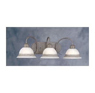 Forte Lighting 5008-03