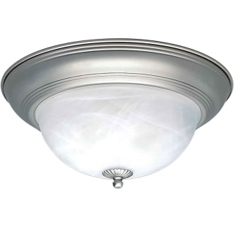 Forte Lighting 2129-02