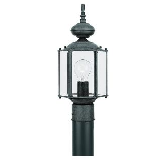 Sea Gull Lighting 8209