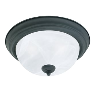 Thomas Lighting SL8691