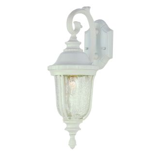 Trans Globe Lighting 4020