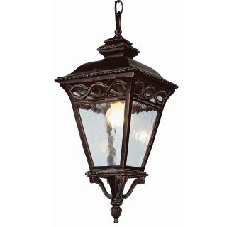 Trans Globe Lighting 50517