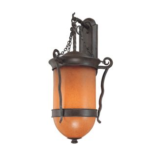 Troy Lighting B9853