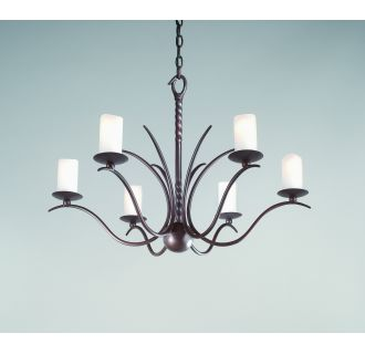 Troy Lighting F9206