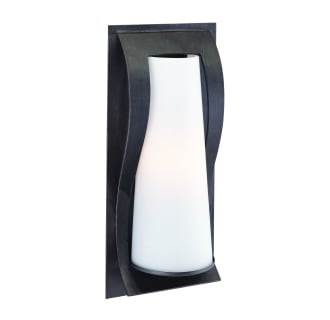 Troy Lighting B1371