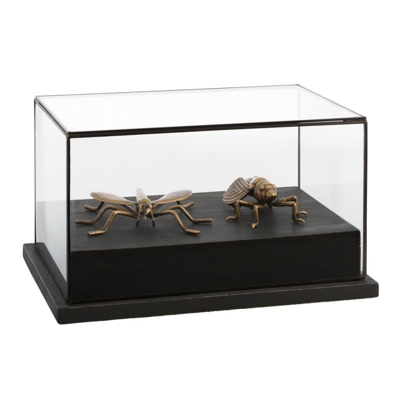 Arteriors 2623 Shipley 11.5 Inch Tall Glass Display Case Clear