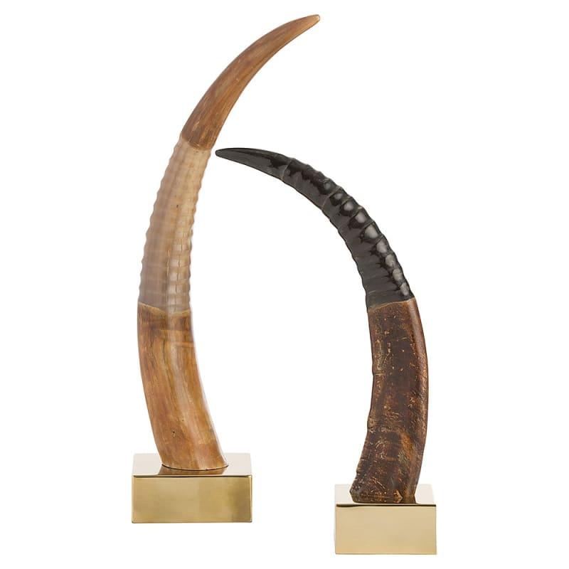 Arteriors 4299 Ignacio 2 Piece Horn Set Polished Brass Home Decor