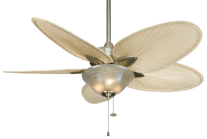 """Fanimation FP7500-F423AB-G210 Windpointe 52"""" 5 Blade Ceiling Fan -"""