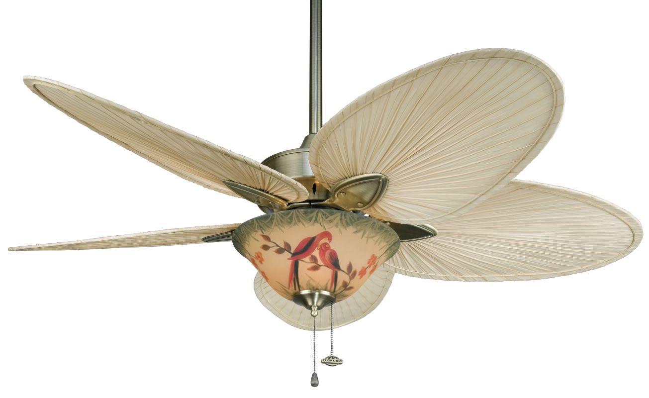 """Fanimation FP7500-F423AB-G439 Windpointe 52"""" 5 Blade Ceiling Fan -"""
