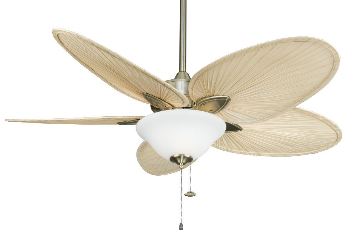 """Fanimation FP7500-F423AB-G456 Windpointe 52"""" 5 Blade Ceiling Fan -"""