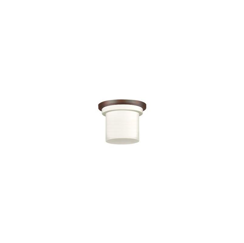Fanimation LK4620 1 Light CFL Light Kit for the Zonix Fan Oil Rubbed Sale $31.00 ITEM#: 543617 MODEL# :LK4620OB UPC#: 840506051799 :