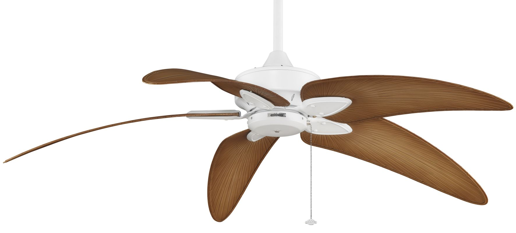 "Fanimation MA7500-BPW6090DNA Windpointe 60"" 5 Blade Ceiling Fan -"