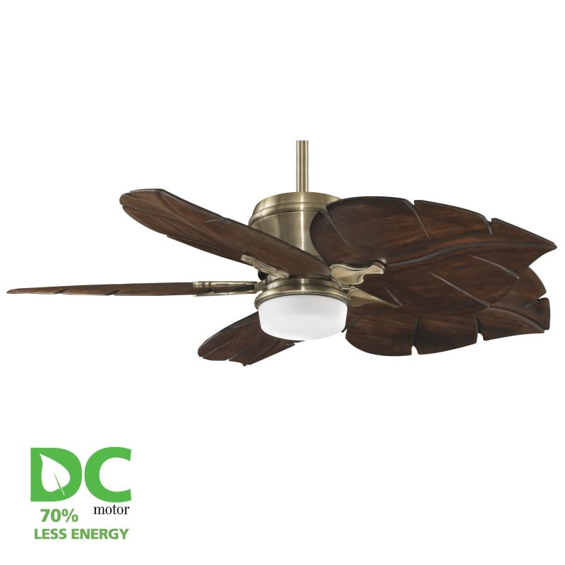 "Fanimation MAD3260-B5280WA Sandella 52"" 5 Blade DC Ceiling Fan -"