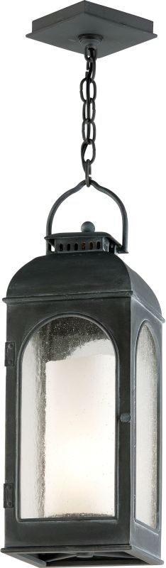 Troy Lighting F3287 Derby 1 Light Outdoor Lantern Pendant with Seedy