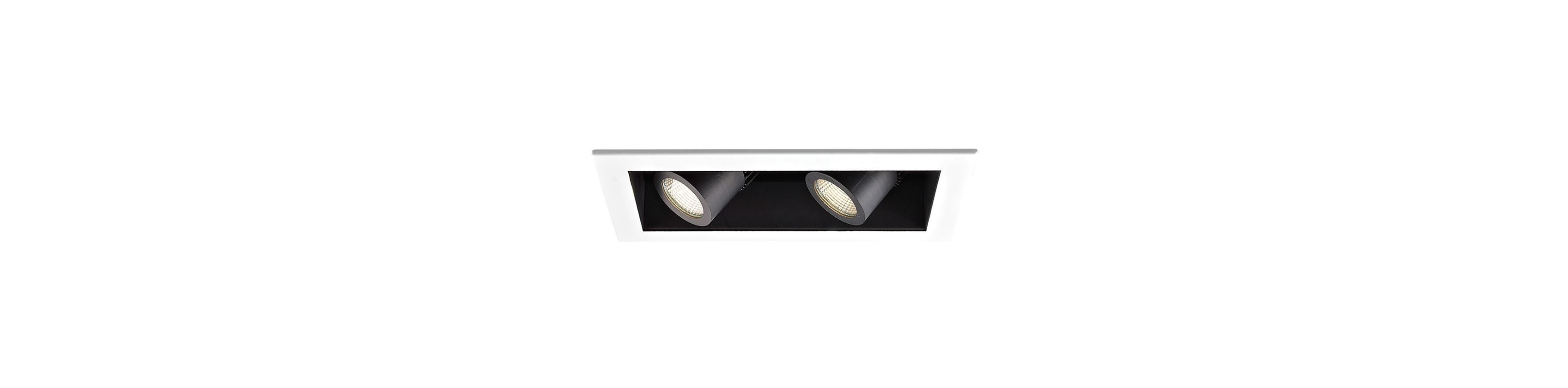 WAC Lighting MT-4LD216N-F930 2 Light Energy Star 3000K High Output LED