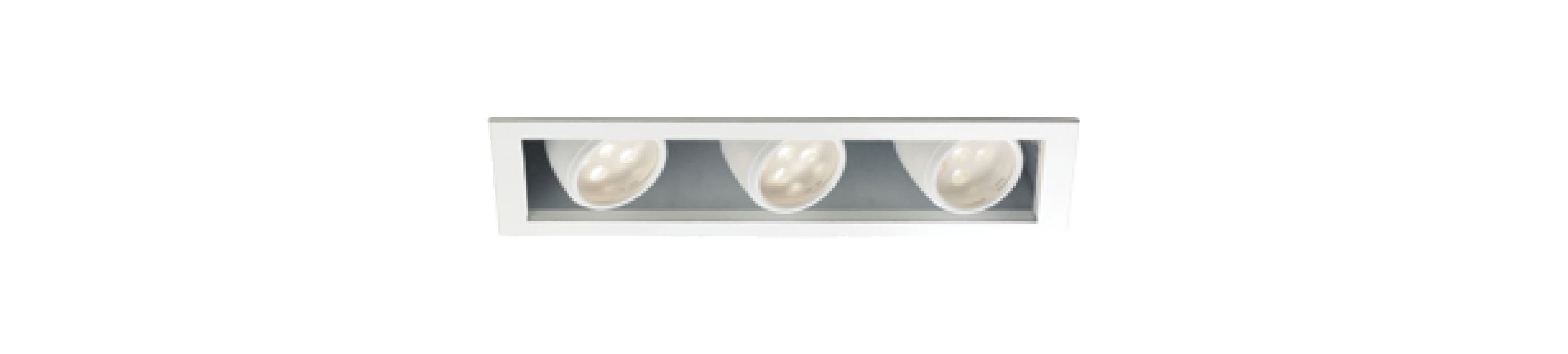 WAC Lighting MT-LED318F-CWHS Multiple Spot 4500K High Output LED