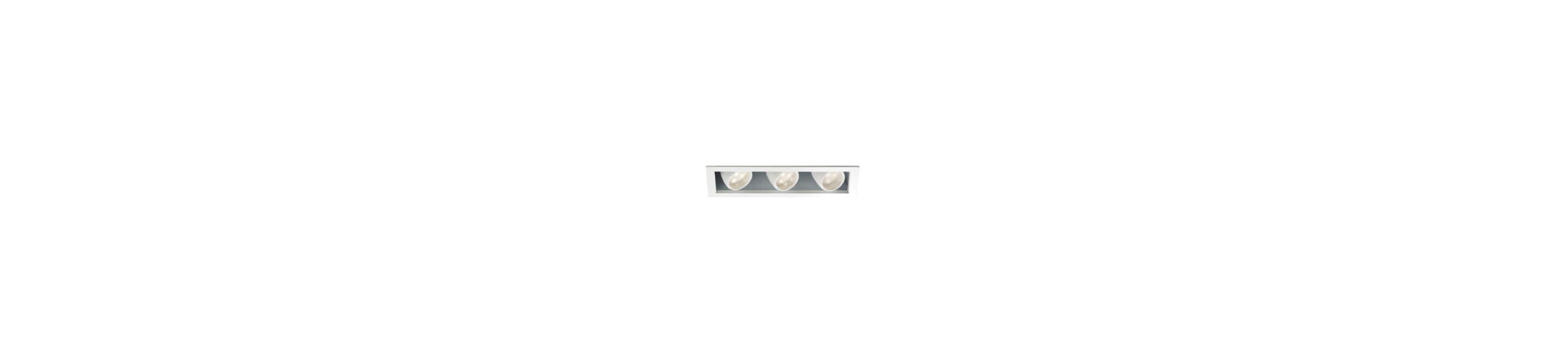 WAC Lighting MT-LED318F-WWHS Multiple Spot 3000K High Output LED