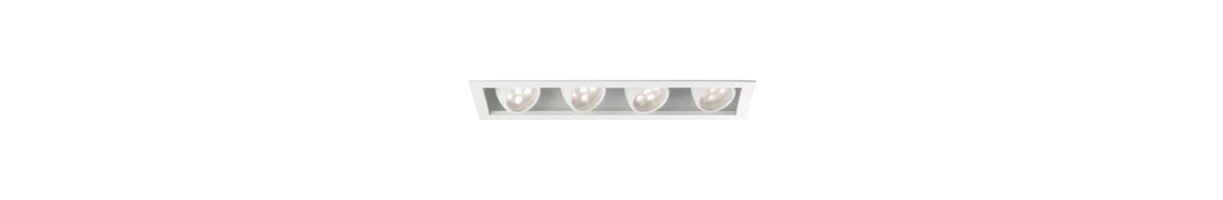 WAC Lighting MT-LED418F-CWHS Multiple Spot 4500K High Output LED