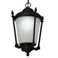 Shop Lithonia Lighting Outdoor Pendants