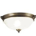 Shop Westinghouse Lighting Ceiling Fixtures