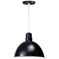 Shop ANP Lighting Outdoor Pendants