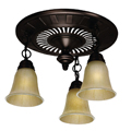 Shop Hunter Fans Ceiling Fixtures