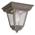 Shop Trans Globe Lighting Outdoor Ceiling Fixtures