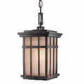 Shop Dolan Designs Outdoor Pendants