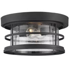 Shop Savoy House Outdoor Ceiling Fixtures