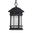 Shop Savoy House Outdoor Pendants