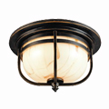 Shop Troy Lighting Outdoor Ceiling Fixtures