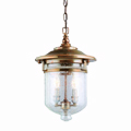 Shop Troy Lighting Outdoor Pendants
