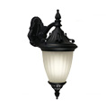 Shop Z-Lite Outdoor Wall Sconces
